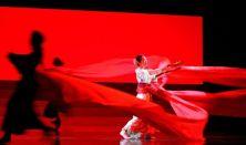 MET 2019/2020 Puccini: Pillangókisasszony