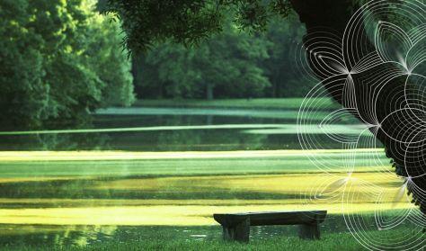 A zene természete - Aratás