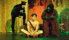 Maugli, a dzsungel fia 10
