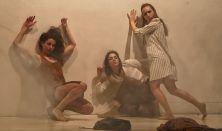 Inversedance-Fodor Zoltán Társulat, Black Box Dance Company (DK)
