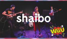 Warm-up Udvar: Shaibo