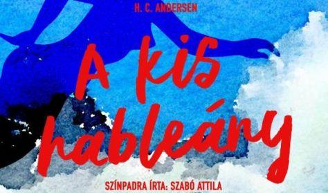 H. C. Andersen - A kis hableány