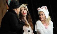 Frakk a macskák réme - Pesti Művész Színház