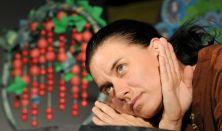 Máté Angi: Volt egyszer egy… - GyerekMOM