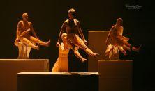 Vágy • Szegedi Kortárs Balett