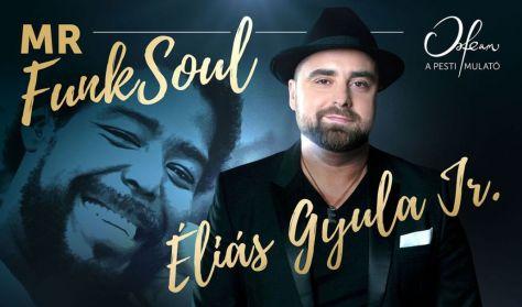 Koncert + Tapas tál - Mr. FunkSoul – Éliás Gyula Jr. estje