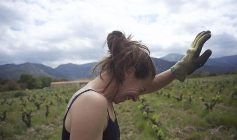 Wine calling (Wine calling)