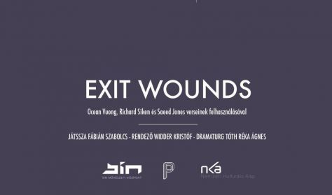 Y Csoport - Exit Wounds