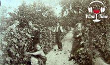 Wine Time – Biodinamikus borok kóstolása
