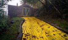 Merénylet a sárgaköves úton