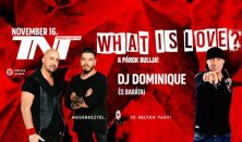 What is love? - A párok bulija! - TNT & Dj Dominique és barátai