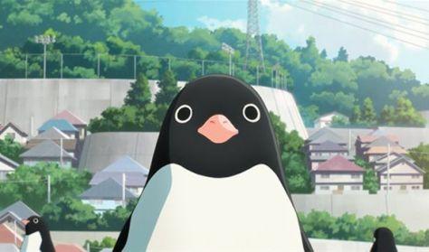 Anilogue 2019 - A pingvinek titkos élete