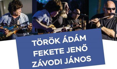 Török Ádám - Fekete Jenő – Závodi János koncert