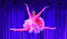 BUDAPESTI BEMUTATÓ - CSIPKERÓZSIKA • Pécsi Balett