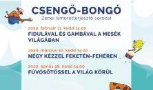 CSENGŐ- BONGÓ SOROZAT: Négy kézzel feketén-fehéren című hangszerismertető Koncert