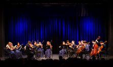 ÁTHALLÁSOK... / az Anima Musicae Kamarazenekar összművészeti előadása