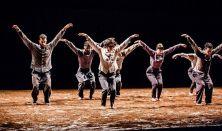 One, One & One: Vertigo Dance Company (ISR)