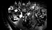Előre nem látható következmények - a MIKAMO Közép - Európai Kamarazenekar koncertje