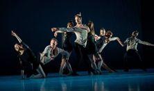 Pécsi Balett – #eznembalett