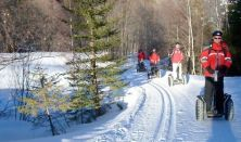 Snowsegway túrák Normafán -  Forraltborozással