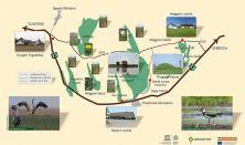Nemzeti parki belépőkártya - Napi jegy nyugdíjas (62 év felett)