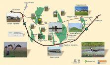 Nemzeti parki belépőkártya -  Éves jegy