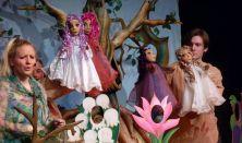 Aranyszamár Bábszínház:Erdők könyve
