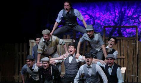 Pannon Várszínház: A Pál utcai fiúk