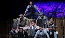 Pannon Várszínház: Pál utcai fiúk