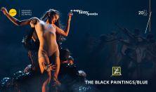 Szegedi Kortárs Balett: The Black Paintings /  Blue