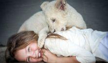 Békási Mozi Esték: Mia és a fehér oroszlány