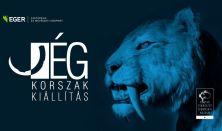 JÉGKORSZAK KIÁLLÍTÁS. Megtekinthető augusztus 14.- szeptember 6.-ig az EKMK-ban.