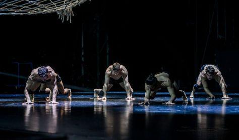 BEMUTATÓ - SPID_ER • Frenák Pál Társulat a Radikal Dance közreműködésével