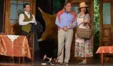 Saul O'Hara: Leszek az özvegyed - Krimikomédia 2 részben az Éless-Szín előadásában
