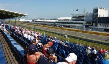 Formula 1 Magyar Nagydíj 2021 - Gold 2 Hétvége (1-12. sor)