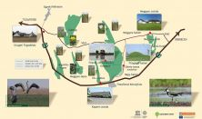 Nemzeti parki belépőkártya - Heti jegy