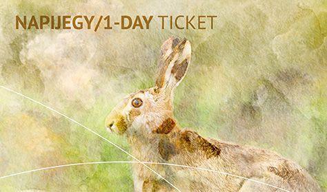 """""""EGY A TERMÉSZETTEL"""" Vadászati és Természeti Világkiállítás - Napi jegy / 1-day ticket"""