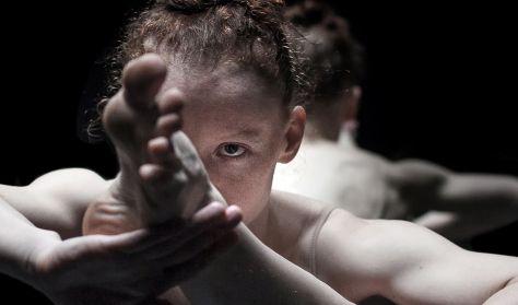 Góbi Rita: Falka - Ifjú Koreográfusok Fóruma+ - Közép-Európa Táncszínház