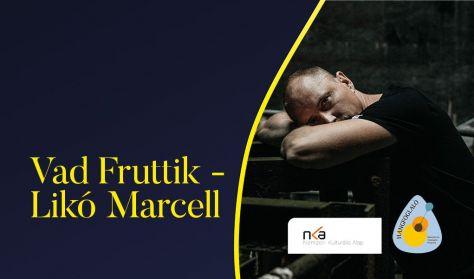 LIKÓ MARCELL ( VAD FRUTTIK) Énekelt és el nem énekelt dalok