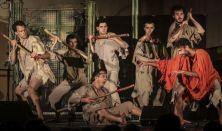 Pannon Várszínház: A dzsungel könyve