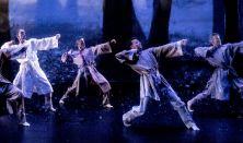 Pécsi Balett - ÁdámÉva