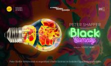 Peter Shaffer: Black Comedy