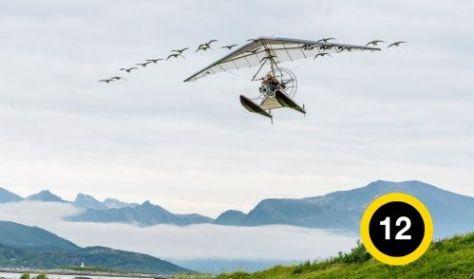 Taníts meg repülni - KultúrKertMozi