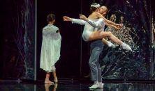 Hattyúk tava • Székesfehérvári Balett Színház