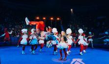Kyiv Municipal Academy of Circus and Performing Arts:Circle
