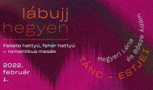 Lábujjhegyen-Megyeri Léna és Bősze Ádám tánc-estje: Fekete hattyú, fehér hattyú