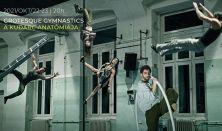 Grotesque Gymnastics:A kudarc anatómiája