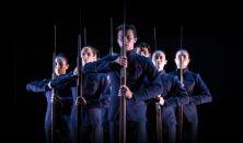 Fantomfájdalom - Székesfehérvári Balett Színház