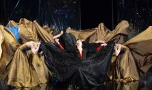 Hattyúk tava - Székesfehérvár Balett Színház