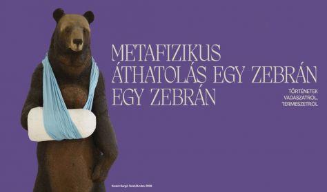 Metafizikus áthatolás egy zebrán